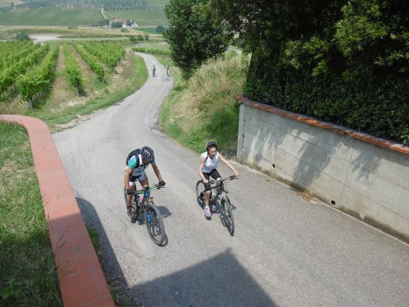 Toscana – CeiS Pistoia e Lucca – Pistoia
